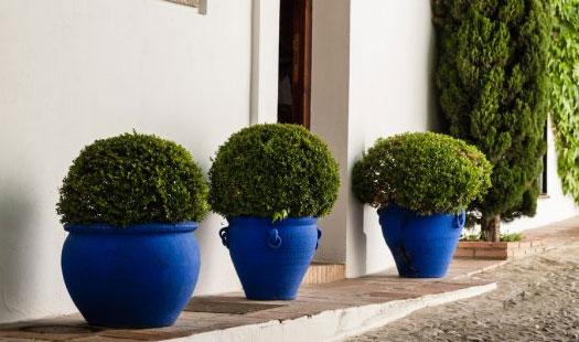 decoracion de jardines vasijas