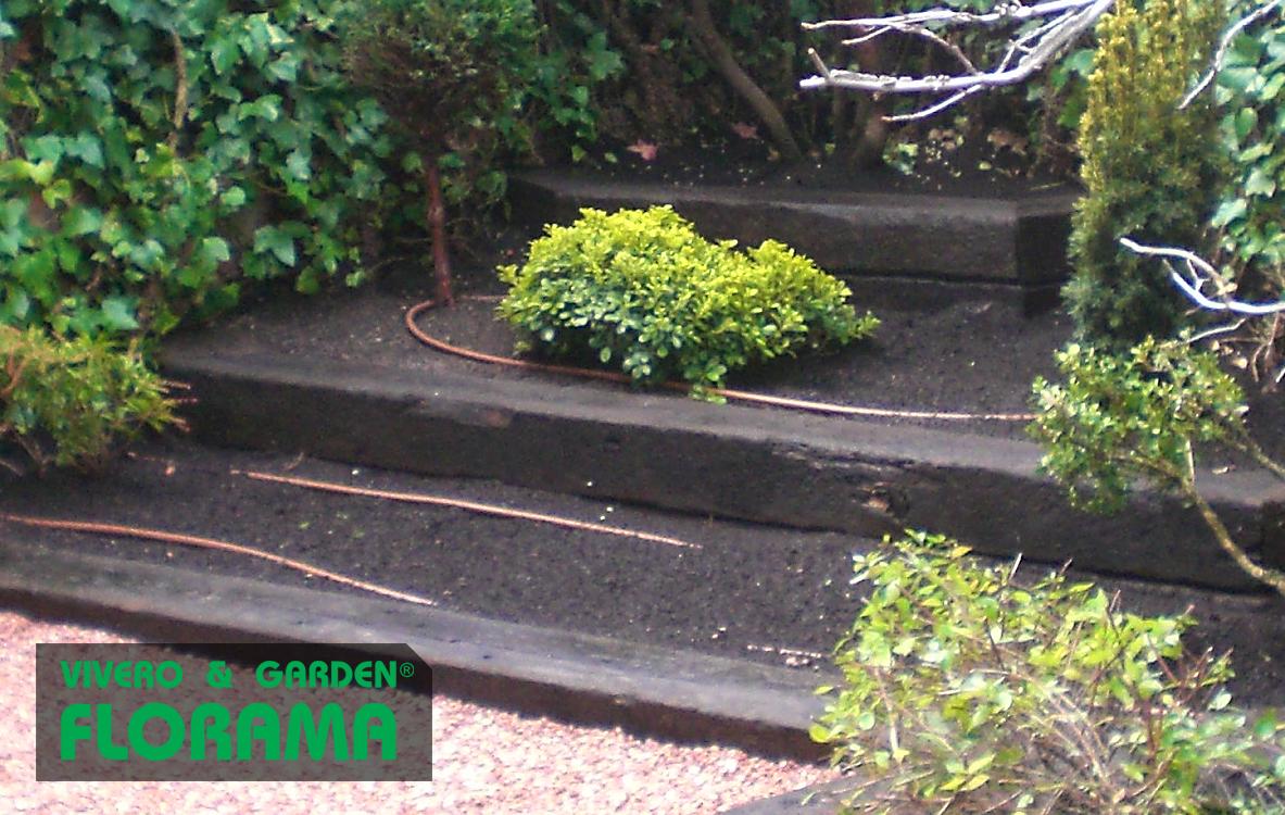 Riego para jardines