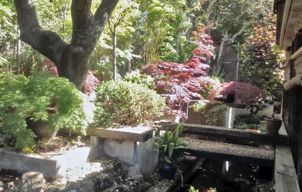 Creación de estanque y ajardinamiento japonés