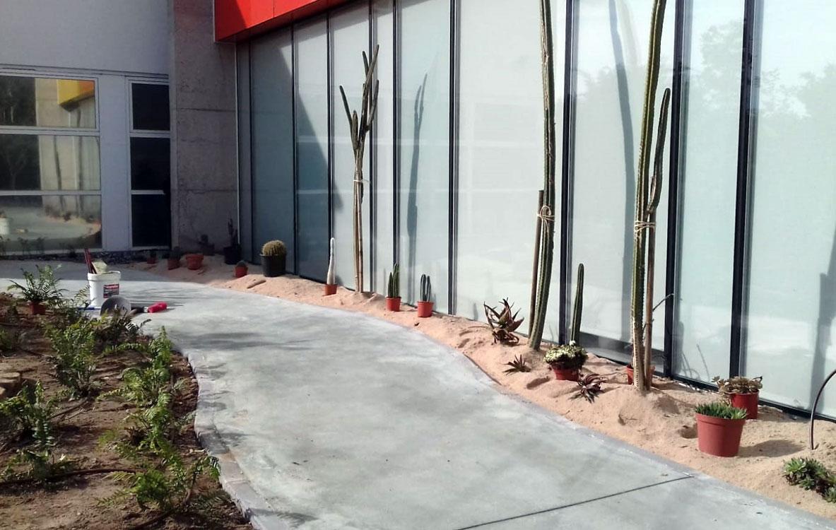Xerojardín con cactus y aromáticas